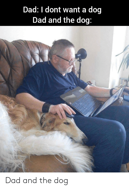 Dad: Dad and the dog