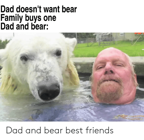 Dad, Family, and Friends: Dad doesn't want bear  Family buys one  Dad and bear: Dad and bear best friends