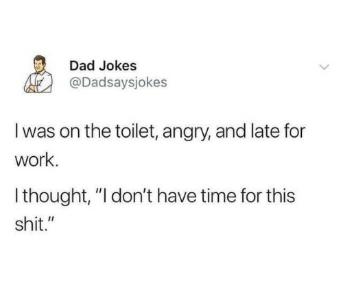 "Dad Jokes: Dad Jokes  @Dadsaysjokes  I was on the toilet, angry, and late for  work.  Ithought, ""I don't have time for this  shit."""