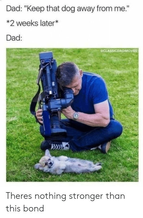"""Dad, Dog, and Bond: Dad: """"Keep that dog away from me.""""  *2 weeks later*  Dad:  CLASSICDADMOVES Theres nothing stronger than this bond"""