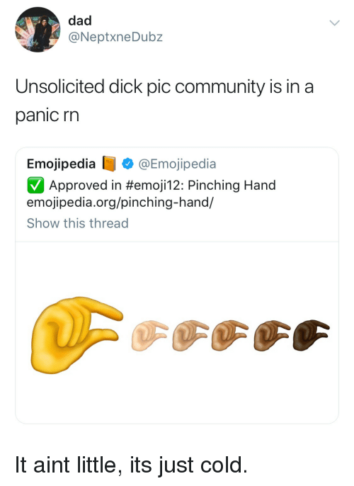 Community, Dad, and Dick: dad  @NeptxneDubz  Unsolicited dick pic community is in a  panic rn  Emojipedia @Emojipedia  Approved in #emojil 2: Pinching Hand  emojipedia.org/pinching-hand/  Show this thread It aint little, its just cold.
