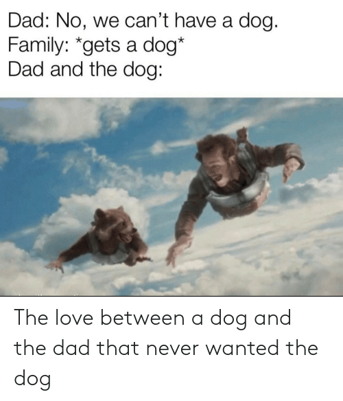 Dad, Family, and Love: Dad: No, we can't have a dog.  Family: *gets a dog*  Dad and the dog: The love between a dog and the dad that never wanted the dog