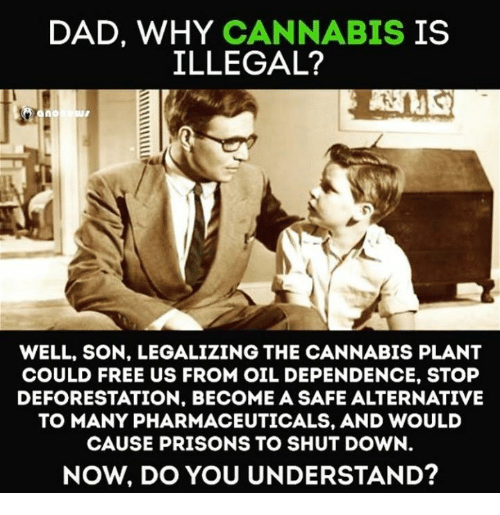 deforestation: DAD, WHY CANNABIS  IS  ILLEGAL?  no  WELL, SON. LEGALIZING THE CANNABIS PLANT  COULD FREE US FROM OIL DEPENDENCE, STOP  DEFORESTATION. BECOME A SAFE ALTERNATIVE  TO MANY PHARMACEUTICALS, AND WOULD  CAUSE PRISONS TO SHUT DOWN  NOW, DO YOU UNDERSTAND?
