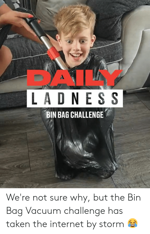 Vacuum: DAILY  LADN ES S  BIN BAG CHALLENGE We're not sure why, but the Bin Bag Vacuum challenge has taken the internet by storm 😂