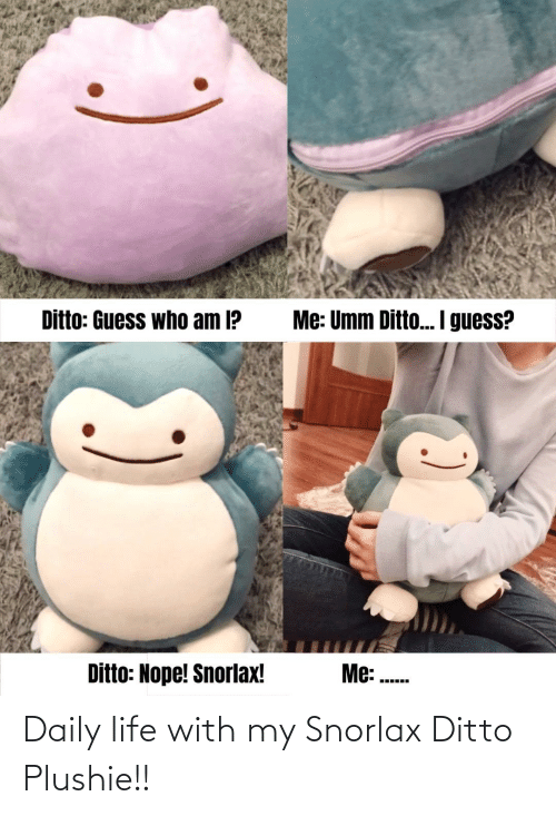 ditto: Daily life with my Snorlax Ditto Plushie!!