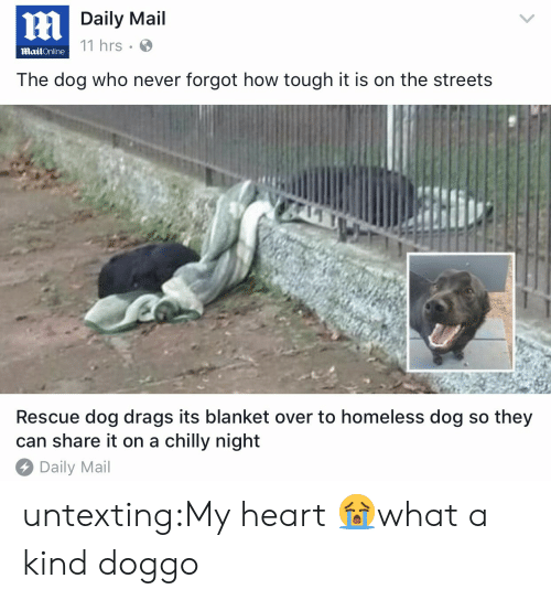Homeless, Streets, and Target: Daily Mail  11 hrs  MailOnline  The dog who never forgot how tough it is on the streets  Rescue dog drags its blanket over to homeless dog so they  can share it on a chilly night  Daily Mail untexting:My heart 😭what a kind doggo