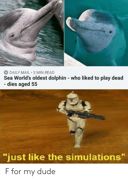 """Daily Mail: DAILY MAIL 3 MIN READ  Sea World's oldest dolphin - who liked to play dead  - dies aged 55  """"just like the simulations"""" F for my dude"""
