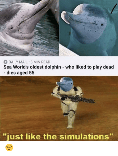 """Daily Mail: DAILY MAIL 3 MIN READ  Sea World's oldest dolphin who liked to play dead  dies aged 55  -.  """"just like the simulations"""" 😔"""