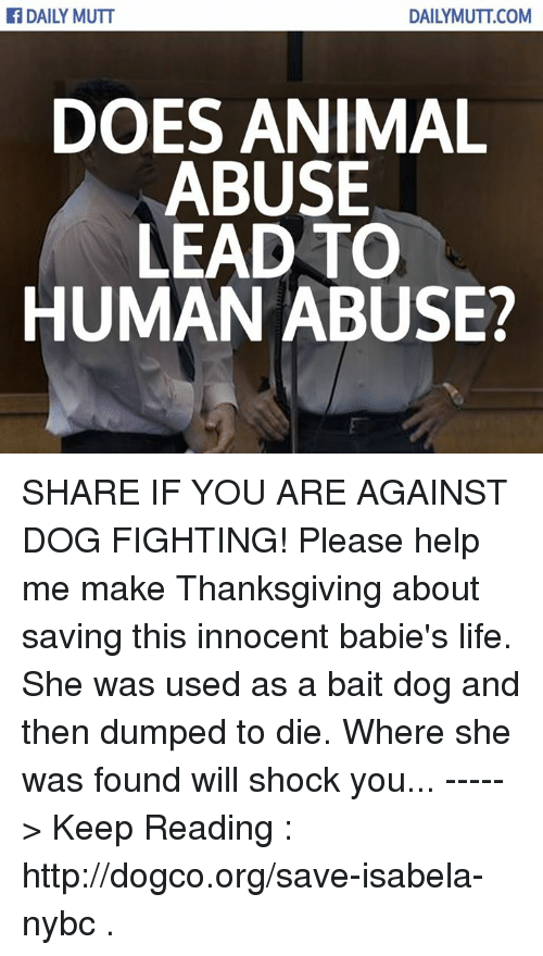 Animal Abuse: DAILY MUTT  DAILY MUTT COM  DOES ANIMAL  ABUSE  LEAD TO  HUMAN ABUSE? SHARE IF YOU ARE AGAINST DOG FIGHTING! Please help me make Thanksgiving about saving this innocent babie's life. She was used as a bait dog and then dumped to die. Where she was found will shock you... -----> Keep Reading : http://dogco.org/save-isabela-nybc .
