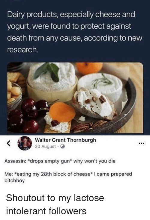 lactose: Dairy products, especially cheese and  yogurt, were found to protect against  death from any cause, according to new  research  Walter Grant Thornburgh  30 August G  Assassin: *drops empty gun* why won't you die  Me: *eating my 28th block of cheese*I came prepared  bitchboy Shoutout to my lactose intolerant followers