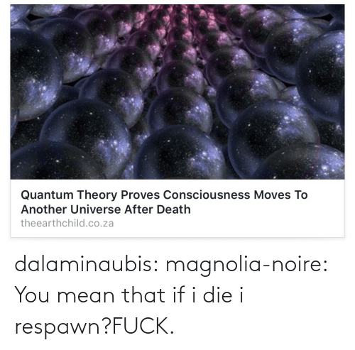 You Mean: dalaminaubis:  magnolia-noire:       You mean that if i die i respawn?FUCK.