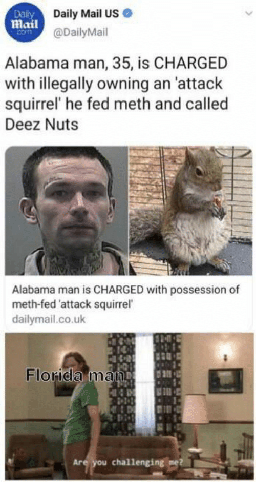 possession: Dalily  Daily Mail US  Mail@DailyMail  com  Alabama man, 35, is CHARGED  with illegally owning an 'attack  squirrel' he fed meth and called  Deez Nuts  Alabama man is CHARGED with possession of  meth-fed 'attack squirrel  dailymail.co.uk  Florida man  Are you challenging me