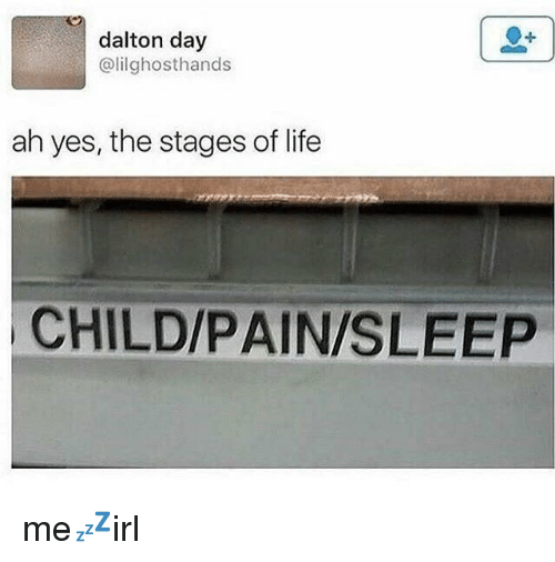 dalton: dalton day  @lilghosthands  ah yes, the stages of life  CHILD/PAIN/SLEEP me💤irl