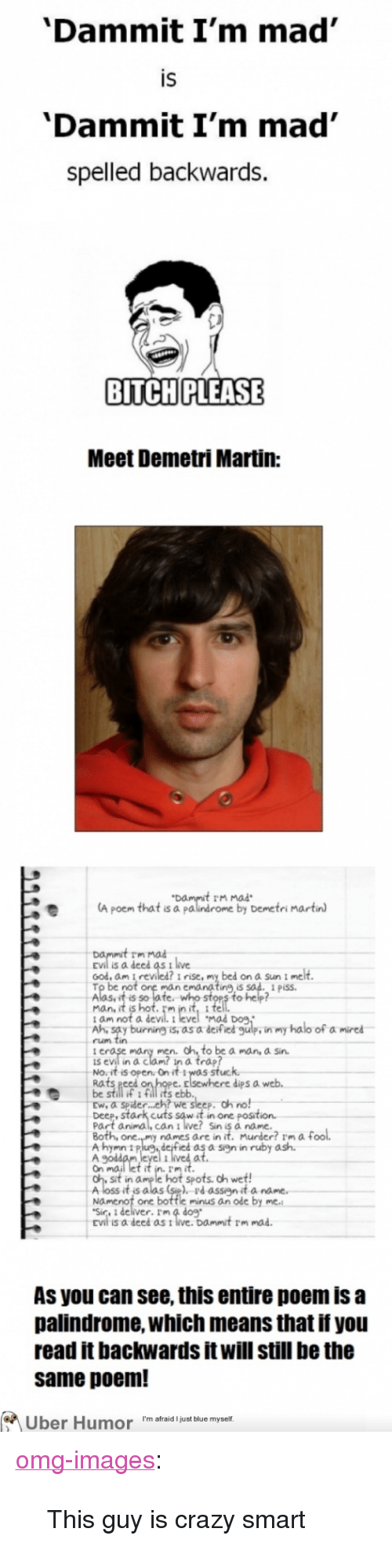 """Dammit Im Mad: 'Dammit I'm mad  IS  'Dammit I'm mad'  spelled backwards.  BITCH PLEASE  Meet Demetri Martin:  t rm mad  A poem that is a palindrome by Demetri martin  rm mad  is a deed as t live  ood, am I revied? i rise, my bed on a Sun i melt  man e  ing,is  Aasuit s hof fe nito sten to hep  mad Dog.  am not a  Ah, say burning is, as a deified gulp, in my halo of a mired  rum tin  men. oh to be a man, a sin.  is evil in a clam? in a trap?  No.it is open. On it Iwas stuc  Rats eeed  be still if 1 fill its eblb  Ew, a spider... eh? we sleep. oh no!  Deep, stark cuts saw it in one posit  Part animal, can i ive! Sin iS a name  dips a  names are in it. Murder? Im af  hymn 11P  Ale eyel iet ar.asninrby ash  Sit in dme le hot spots. oh wetf!  A loss it is alas (sie). rdassign it a name  Namenot one bottle minus an ode by  EVİ is a deed as t live.  Dammit rm mad.  As you can see, this entire poem is a  palindrome, which means that if you  read it backwards it will still be the  same poem!  Uber Humor 'm afrid just blue myself <p><a href=""""http://omg-images.tumblr.com/post/152854245066/this-guy-is-crazy-smart"""" class=""""tumblr_blog"""">omg-images</a>:</p>  <blockquote><p>This guy is crazy smart</p></blockquote>"""