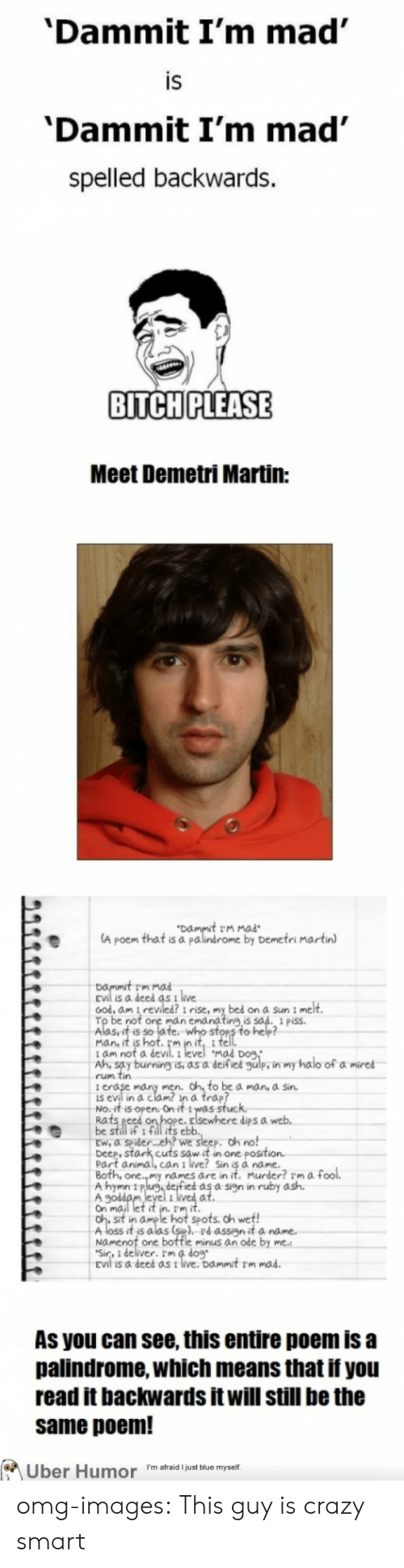 Dammit Im Mad: 'Dammit I'm mad  IS  'Dammit I'm mad'  spelled backwards.  BITCH PLEASE  Meet Demetri Martin:  t rm mad  A poem that is a palindrome by Demetri martin  Dammit rm  is a deed as t live  ood, am i reviled? i rise, my bed on a Sun i me  man c  ing,is  Aasuit s of fe nito sten o hep  Mad Do9  t am not a  Ah, say burning is, as a deified gulp, in my halo of a mired  rum tin  i e  is evil in a clam? in a trap?  No.it is open. On it 1was stuc  Rats eed  be still if 1 fill its eblb  Ew, a spider.. eh? we sleep. oh no!  Deep, stark cuts sow it in one posit  Part animal, can i live? Sin is à name.  dips a  names are in it. Murder? rm a fool.  A hymn 11P  ed as a sign in ruby ash.  Gh st in aume l hot spots. oh wet!  Aloss it's alas (st), Pd assyit a na  Namenot one bottle minus an ode by  Sir, 1 deliver. Im 4 dog  As you can see, this entire poem is a  palindrome, which means that if you  read it backwards it will still be the  same poem!  Uber Humor I'm afraid just blue myself omg-images:  This guy is crazy smart