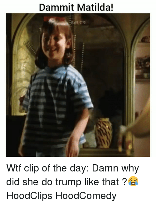 Funny, Matilda, and Wtf: Dammit Matilda!  JAMES, GTFO Wtf clip of the day: Damn why did she do trump like that ?😂 HoodClips HoodComedy