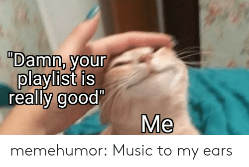 "Music, Tumblr, and Blog: ""Damn, your  playlist is  really good'  Me memehumor:  Music to my ears"