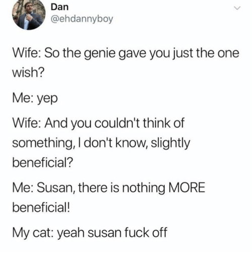 Yeah, Fuck, and Wife: Dan  @ehdannyboy  Wife: So the genie gave you just the one  Wish?  Me: yep  Wife: And you couldn't think of  something, I don't know, slightly  beneficial?  Me: Susan, there is nothing MORE  beneficial!  My cat: yeah susan fuck off