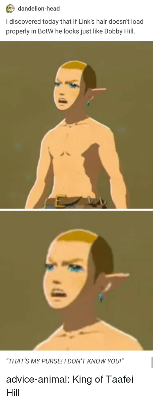 "botw: dandelion-head  I discovered today that if Link's hair doesn't load  properly in BotW he looks just like Bobby Hill.  ""THAT'S MY PURSE!I DON'T KNOW YOU!"" advice-animal:  King of Taafei Hill"