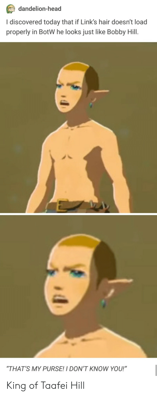 "botw: dandelion-head  I discovered today that if Link's hair doesn't load  properly in BotW he looks just like Bobby Hill.  ""THAT'S MY PURSE!I DON'T KNOW YOU!"" King of Taafei Hill"