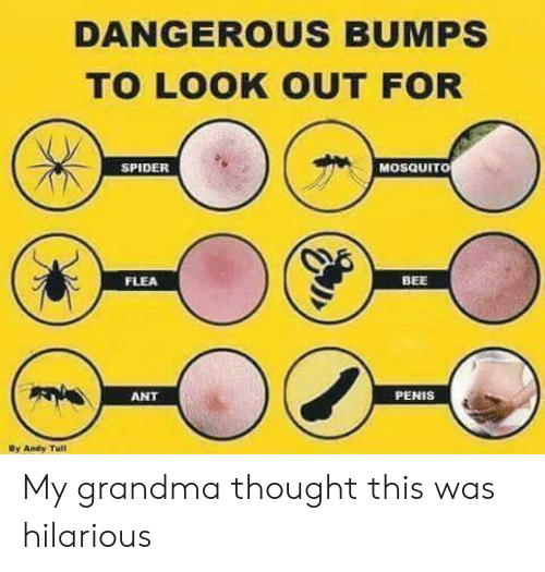 Grandma, Spider, and Penis: DANGEROUS BUMPS  TO LOOK OUT FOR  SPIDER  MOSQUITO  FLEA  BEE  ANT  PENIS  By Aney Tu!l My grandma thought this was hilarious