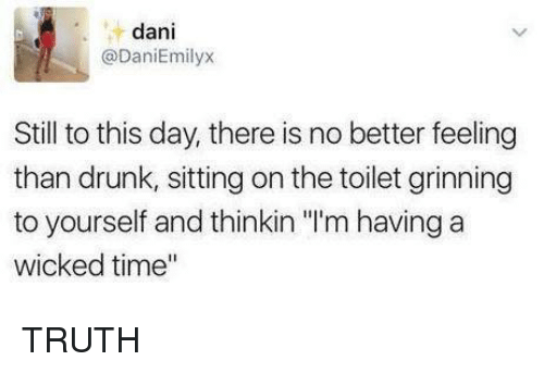 "Drunk, Memes, and Time: dani  @DaniEmilyx  Still to this day, there is no better feeling  than drunk, sitting on the toilet grinning  to yourself and thinkin ""'m having a  wicked time"" TRUTH"