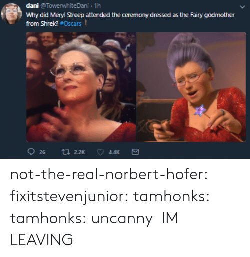 Shrek: dani @TowerwhiteDani 1h  Why did Meryl Streep attended the ceremony dressed as the Fairy godmother  from Shrek? #Oscars t  4.4K not-the-real-norbert-hofer:  fixitstevenjunior:  tamhonks:  tamhonks: uncanny    IM LEAVING