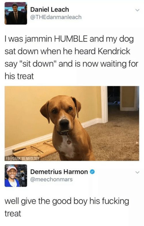 """Dank, Fucking, and Good: Daniel Leach  @THEdanmanleach  I was jammin HUMBLE and my dog  sat down when he heard Kendrick  say """"sit down"""" and is now waiting for  his treat  FB@DANK MEMEOLOGY  Demetrius Harmon  @meechonmars  well give the good boy his fucking  treat"""