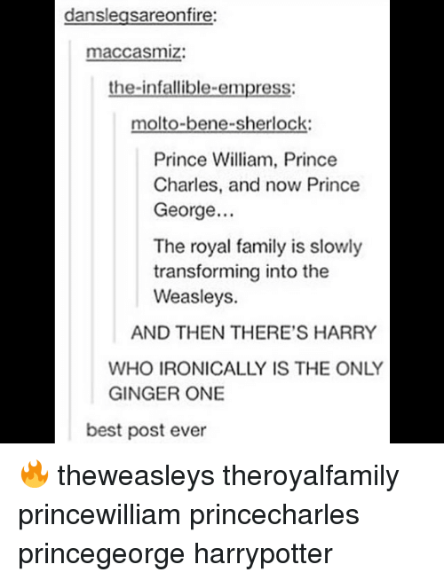beneful: danslegsareonfire:  maccasmiz:  the-infallible-empress:  molto-bene-sherlock  Prince William, Prince  Charles, and now Prince  George..  The royal family is slowly  transforming into the  Weasleys.  AND THEN THERE'S HARRY  WHO IRONICALLY IS THE ONLY  GINGER ONE  best post ever 🔥 theweasleys theroyalfamily princewilliam princecharles princegeorge harrypotter