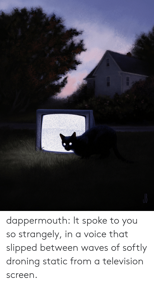 Television: dappermouth:  It spoke to you so strangely, in a voice that slipped between waves of softly droning static from a television screen.