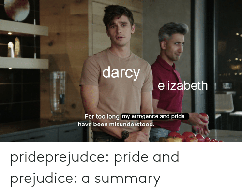 Tumblr, Blog, and Http: darcy  93  elizabeth  For too long my arrogance and pride  have been misunderstood. prideprejudce:  pride and prejudice: a summary