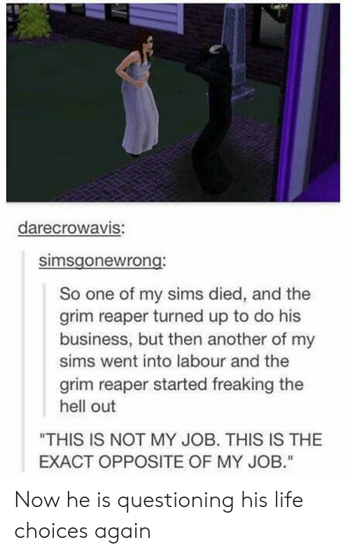 """Questioning: darecrowaVIS:  simsgonewrong  So one of my sims died, and the  grim reaper turned up to do his  business, but then another of my  sims went into labour and the  grim reaper started freaking the  hell out  """"THIS IS NOT MY JOB. THIS IS THE  EXACT OPPOSITE OF MY JOB."""" Now he is questioning his life choices again"""