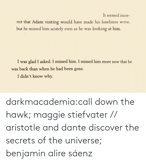 universe: darkmacademia:call down the hawk; maggie stiefvater // aristotle and dante discover the secrets of the universe; benjamin alire sáenz