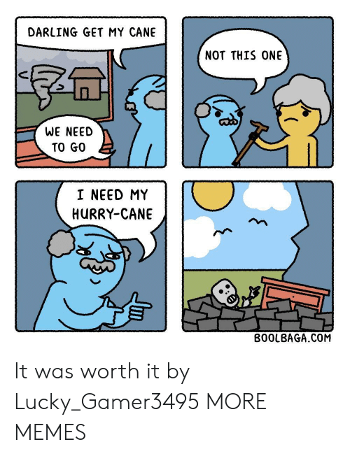 It Was Worth It: DARLING GET MY CANE  NOT THIS ONE  WE NEED  TO GO  I NEED MY  HURRY-CANE  BO0LBAGA.COM It was worth it by Lucky_Gamer3495 MORE MEMES
