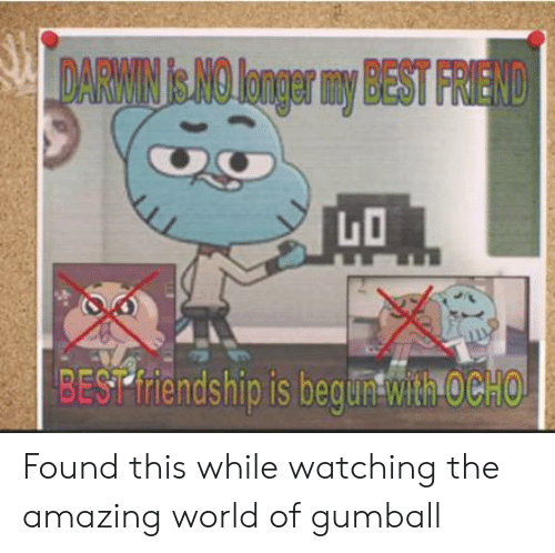 Ocho: DARWIN & NO longer my BEST FRIEND  BEST friendship is beguntwith OCHO Found this while watching the amazing world of gumball
