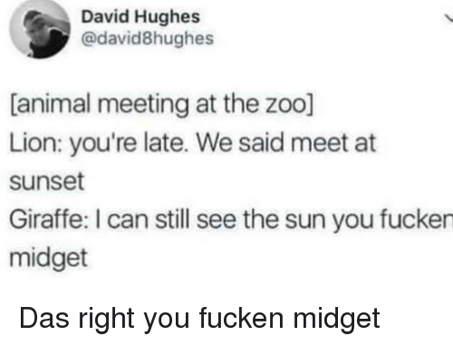 Youre Late: David Hughes  @david8hughes  [animal meeting at the zoo]  Lion: you're late. We said meet at  sunset  Giraffe: I can still see the sun you fucken  midget Das right you fucken midget