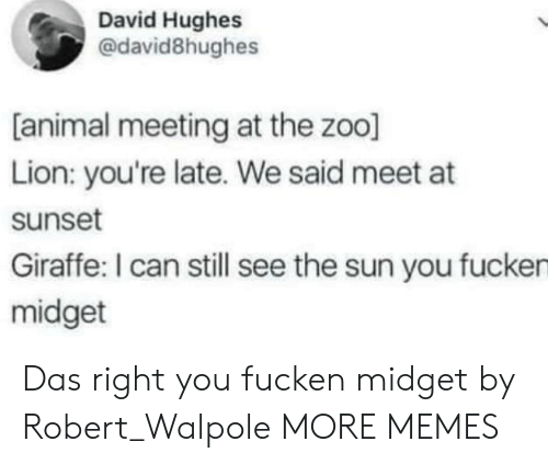 Youre Late: David Hughes  @david8hughes  [animal meeting at the zoo]  Lion: you're late. We said meet at  sunset  Giraffe: I can still see the sun you fucken  midget Das right you fucken midget by Robert_Walpole MORE MEMES