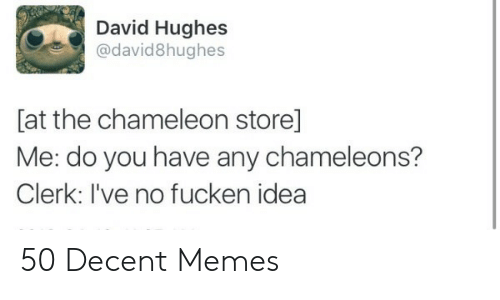 Memes, Chameleon, and Idea: David Hughes  @david8hughes  [at the chameleon store]  Me: do you have any chameleons?  Clerk: I've no fucken idea 50 Decent Memes