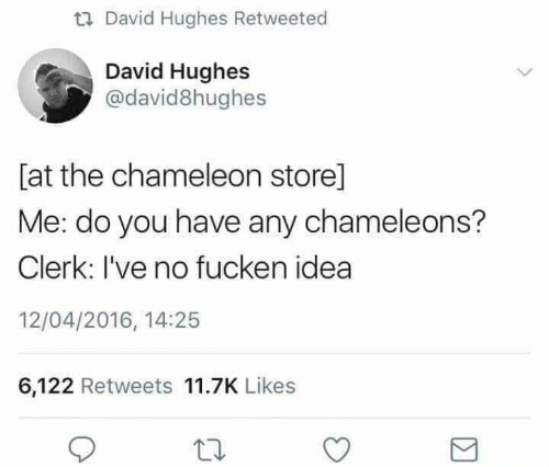Chameleon, Idea, and You: David Hughes Retweeted  David Hughes  @david8hughes  [at the chameleon store]  Me: do you have any chameleons?  Clerk: I've no fucken idea  12/04/2016, 14:25  6,122 Retweets 11.7K Likes