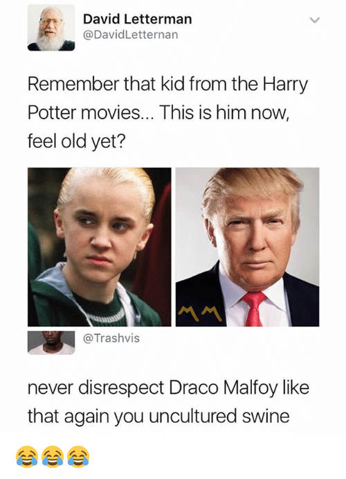 Feeling Old: David Lettermarn  @DavidLetternan  Remember that kid from the Harry  Potter movies... This is him now,  feel old yet?  @Trashvis  never disrespect Draco Malfoy like  that again you uncultured swine 😂😂😂