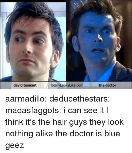 Totallylookslike: david tennant  TotallyLooksLike.comthe doctor aarmadillo:  deducethestars:  madasfaggots:  i can see it  I think it's the hair  guys they look nothing alike the doctor is blue geez