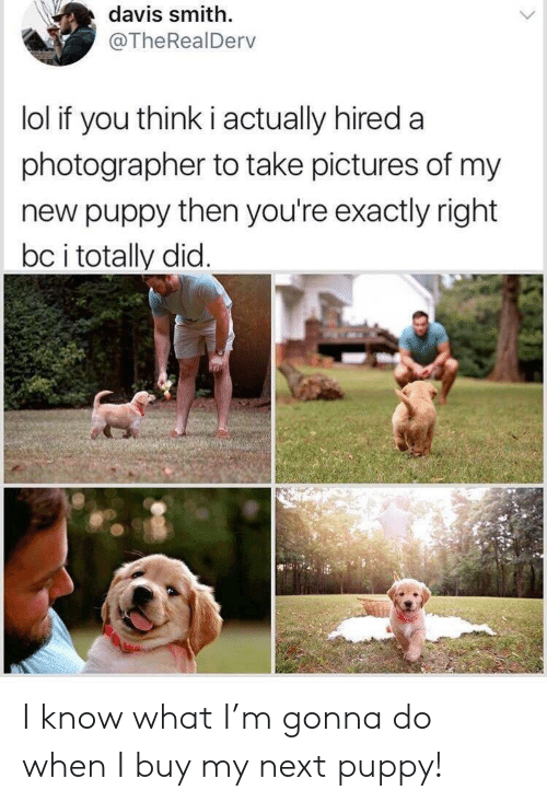 Exactly Right: davis smith.  @TheRealDerv  lol if you think i actually hired a  photographer to take pictures of my  new puppy then you're exactly right  bc i totally did I know what I'm gonna do when I buy my next puppy!