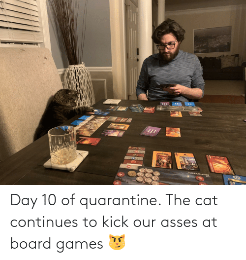 kick: Day 10 of quarantine. The cat continues to kick our asses at board games 😼
