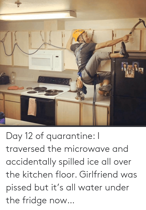 Girlfriend: Day 12 of quarantine: I traversed the microwave and accidentally spilled ice all over the kitchen floor. Girlfriend was pissed but it's all water under the fridge now…