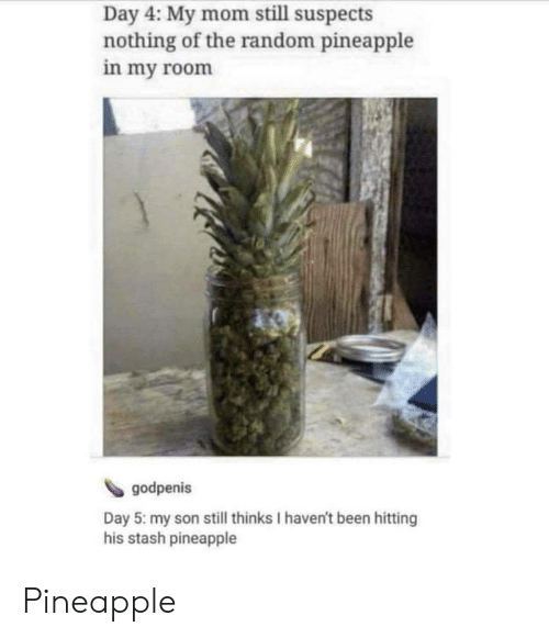 stash: Day 4: My mom still suspects  nothing of the random pineapple  in my room  godpenis  Day 5: my son still thinks I haven't been hitting  his stash pineapple Pineapple
