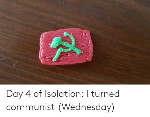 Wednesday: Day 4 of Isolation: I turned communist (Wednesday)