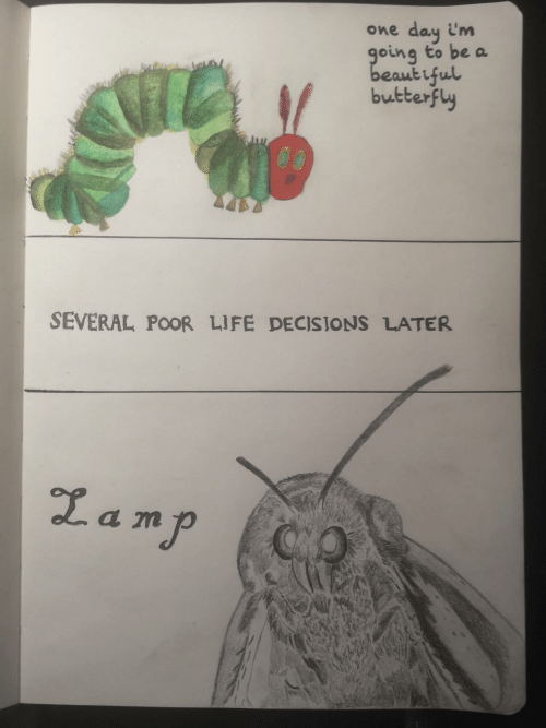 Butterfly: day i'm  going to be a  beaut iful  butterfly  One  SEVERAL POOR LIFE DECISIONS LATER  Lamp  QO