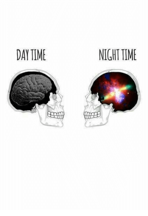Night Time: DAY TIME  NIGHT TIME