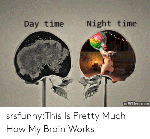 Tumblr, Blog, and Brain: Day time  Night time  THEMETAPICTURE.COM srsfunny:This Is Pretty Much How My Brain Works
