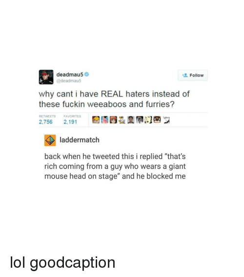 """Haterate: deadmau5  Follow  @deadmau5  why cant i have REAL haters instead of  these fuckin weeaboos and furries?  RETWEETS FAVORITES  2,756  2,191  ladder match  back when he tweeted this i replied """"that's  rich coming from a guy who wears a giant  mouse head on stage"""" and he blocked me lol goodcaption"""